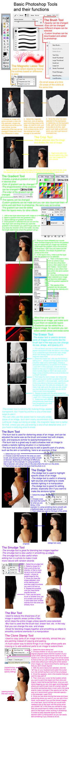 Ziail im here deviantart xearoxas 10 10 basic photoshop tools tutorial by holly6669666 baditri Choice Image