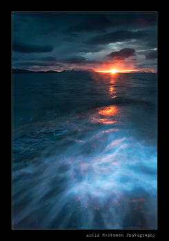 Midnight Sun Blues