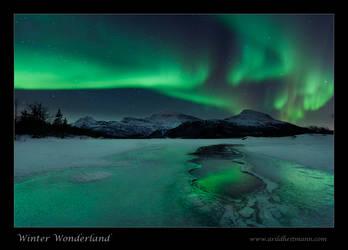 Winter Wonderland by uberfischer