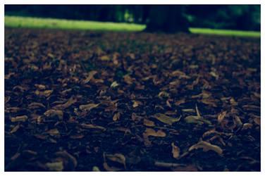 Leafes