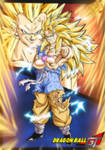 Goku Ssj3 Vs Vegeta Ssj3 - Full power  [Color]