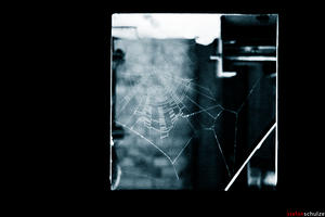 networks by pandemic-artwork