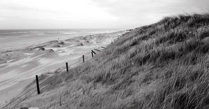 norderney coast by pandemic-artwork