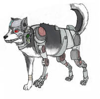 The DED March 7 - Cyberdog?