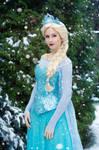 Elsa Frozen IV