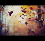 Autumn by Natalyy