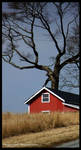 Red Barn of Life