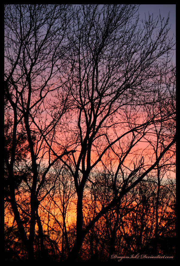 Sunrise by DragonInk7