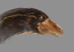 A toothy duck
