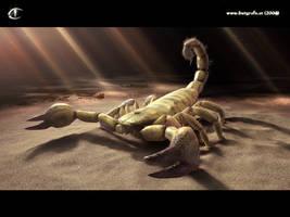sand scorpion by inetgrafx