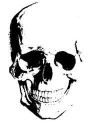 Sorrowful skulls by BlackandBluebirds