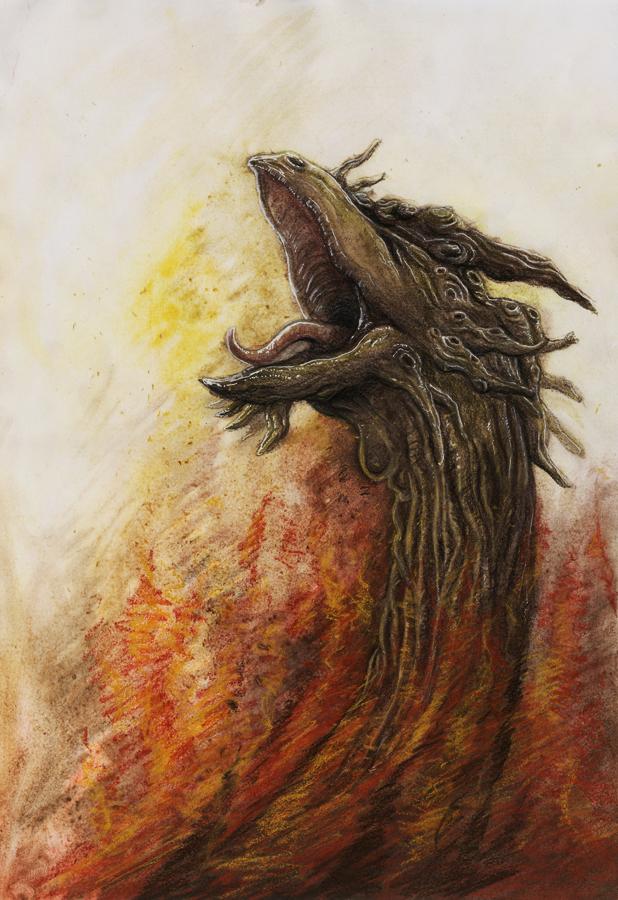 Fire by Werwal