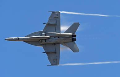 U.S. Navy F-18 Hornet2 by tanzenderengel
