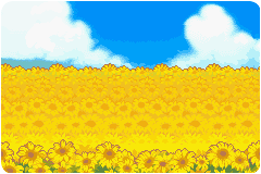 sunflowers always face the sun. by the-boy-named-Iucas