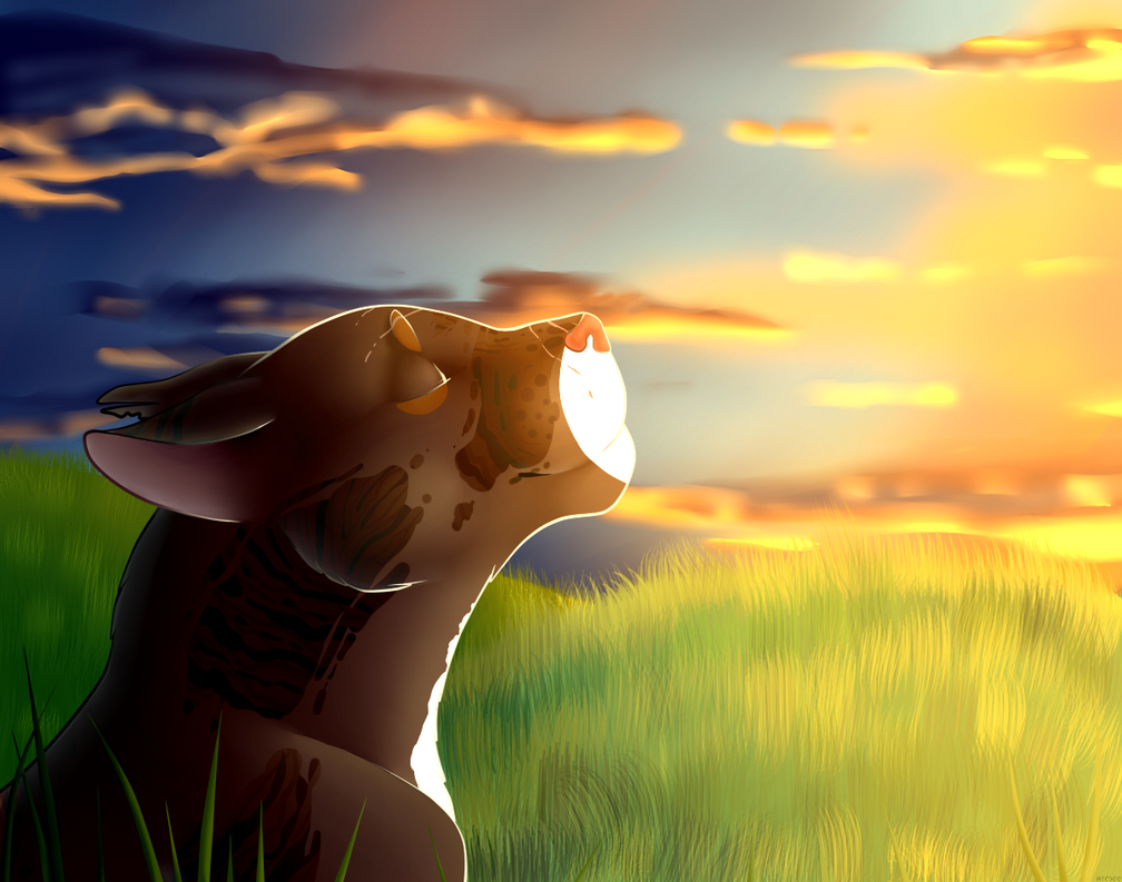 To the Sun by Aiymee
