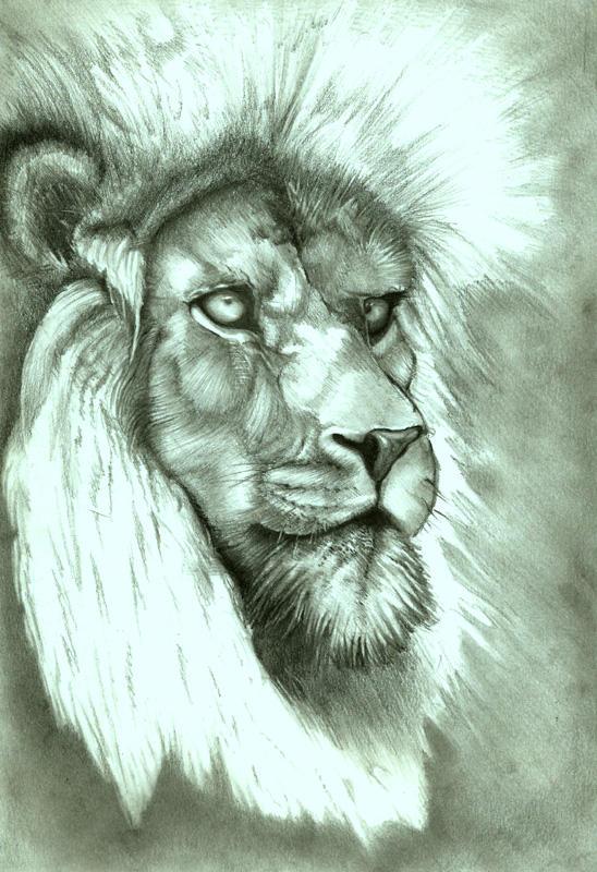 royal predator
