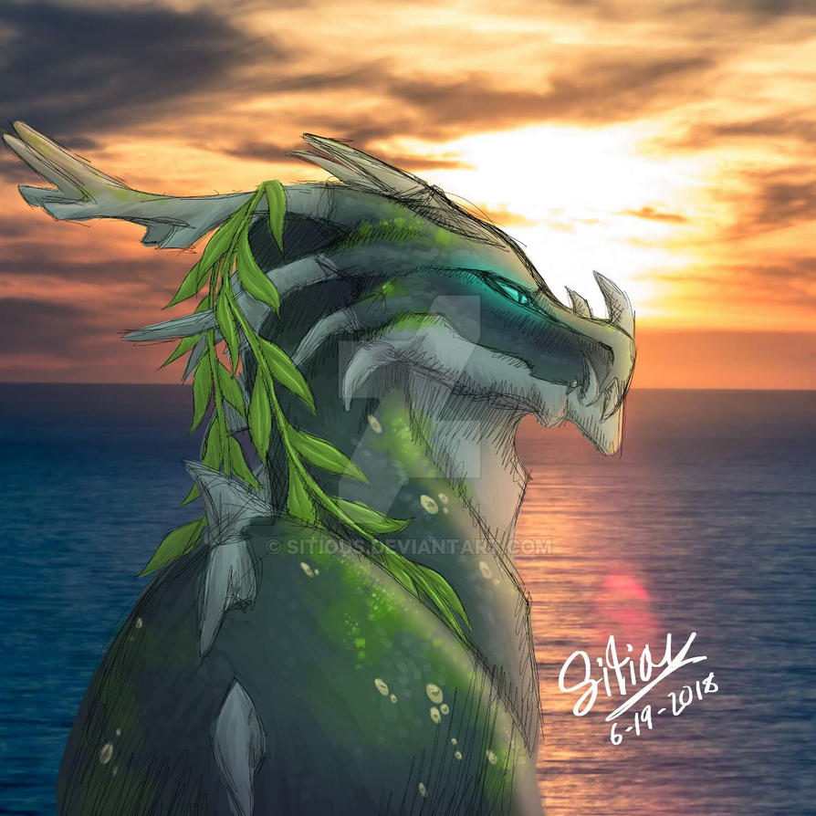 Shipwreck The Dragon by Sitious