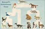 Hexapod's Evolutionary Chart