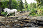 Ghostly horse