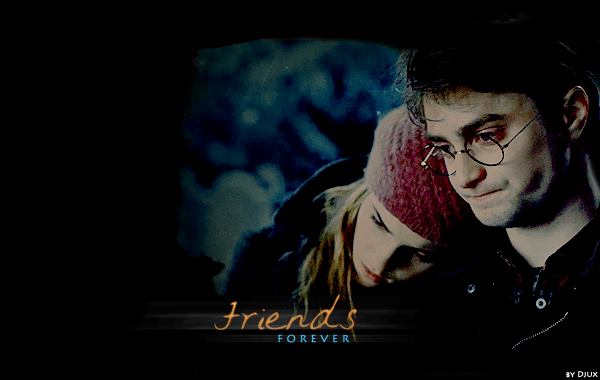 Harry and Hermione - Friends