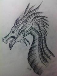 New Dragon 2015 by Saskank91