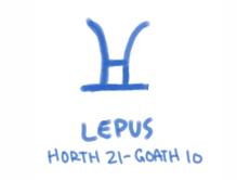 Lepus