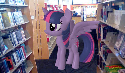 Book Horse in the Library