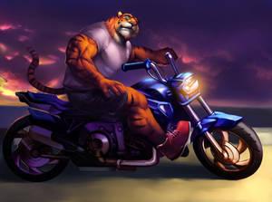 Tiger Biker  by Echin
