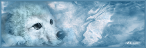 Wolf's Rain Siggy by Zeus00