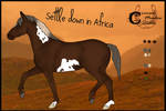 [CMS] Settle Down in Africa