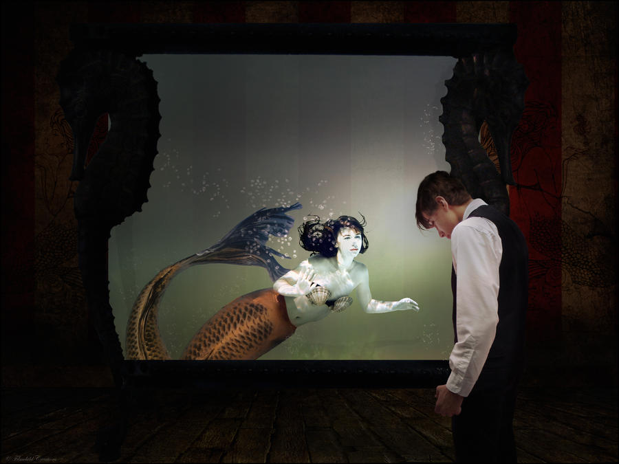 The Exhibit by Filmchild