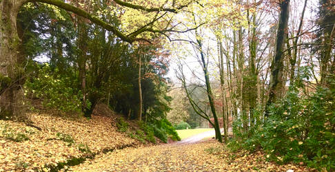 Autumn Scotland Moffatt