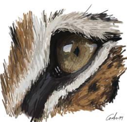 Tiger's Eye by Xixikal