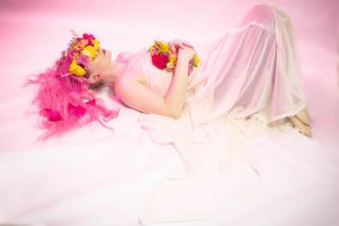 Flower crown 5 by Sinned-angel-stock