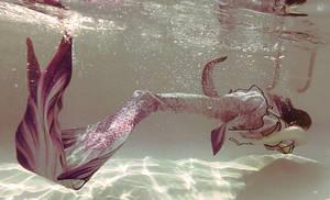 Underwater Mermaid Tail stock