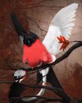 Bullfinch griffin