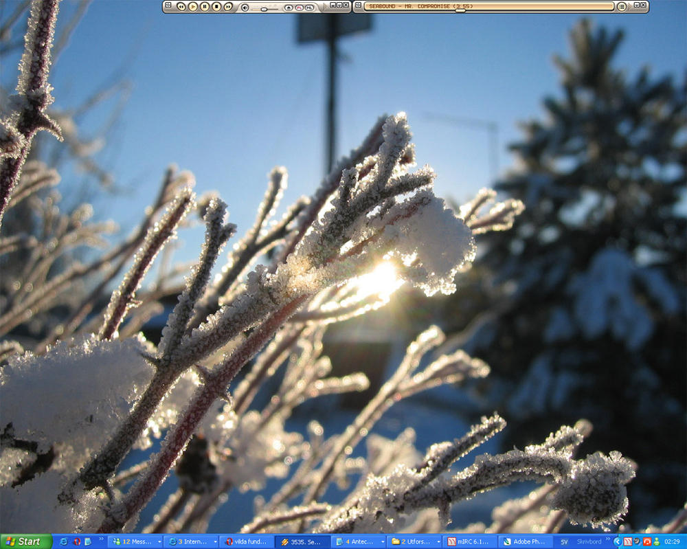 Winter Desktop by vild
