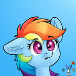 Dashie (another one)