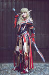 Blood Elf Paladin - WoW