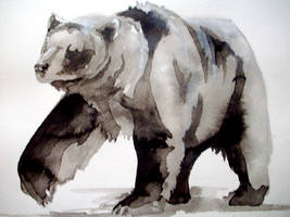 bear by bigredsharks