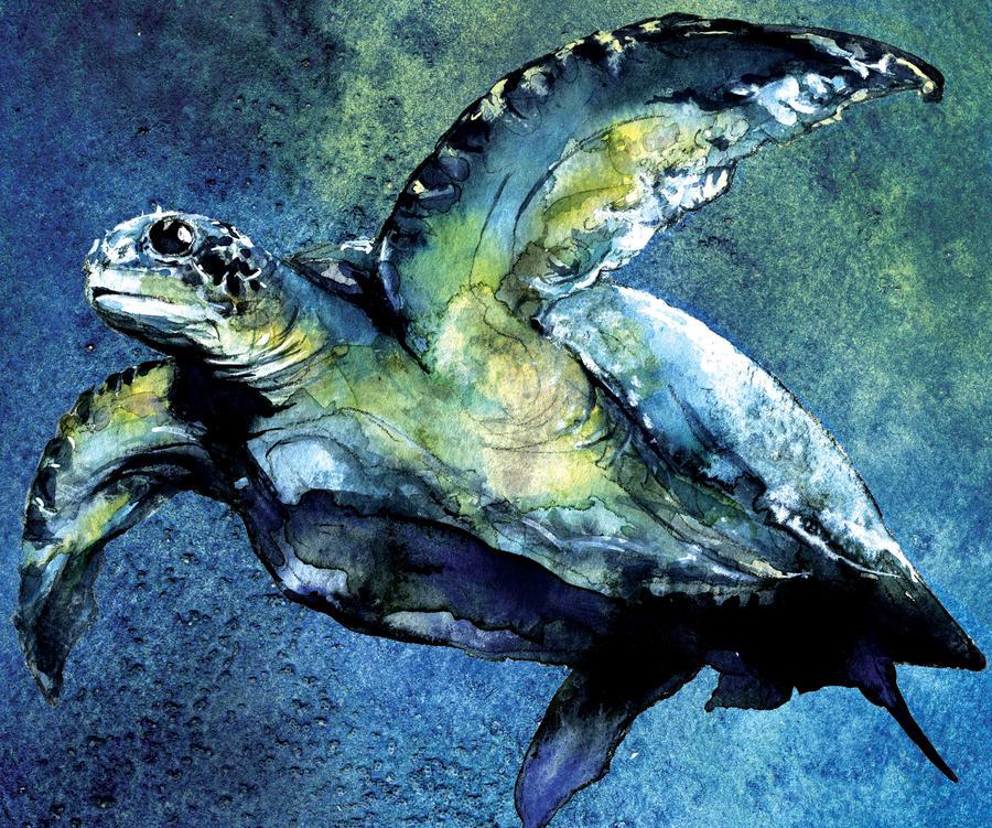 Sea Turtle by bigredsharks