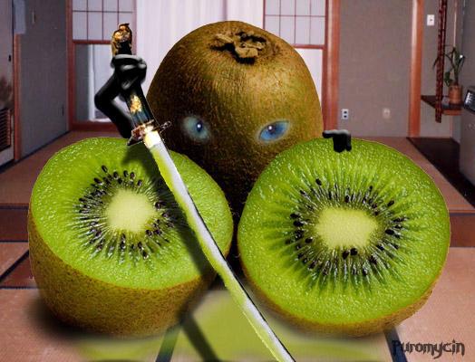 Image Result For Downloads Games Fruit Ninja Free