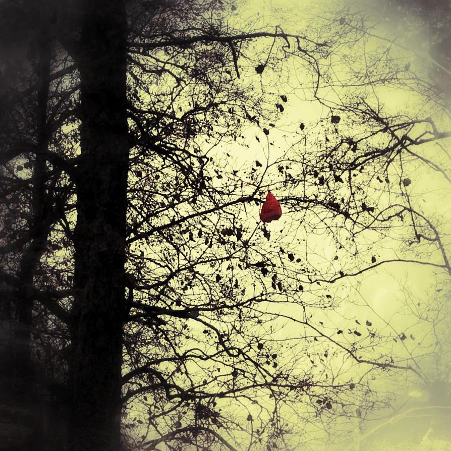 Moody by Tamborita