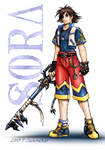 Sora- Four Years Later