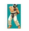 Ryu Gaiden by diochi