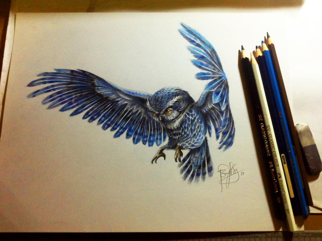 blue owl by bensy123 on deviantART