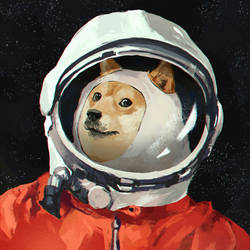 Doge by IlyaBrovkin