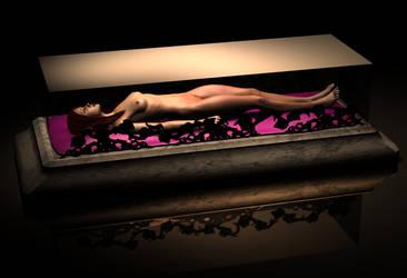 Sleeping Beauty by wanlongcok