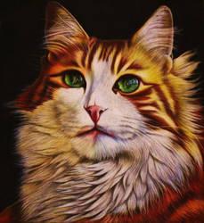 Chalk Cat Drawing 2