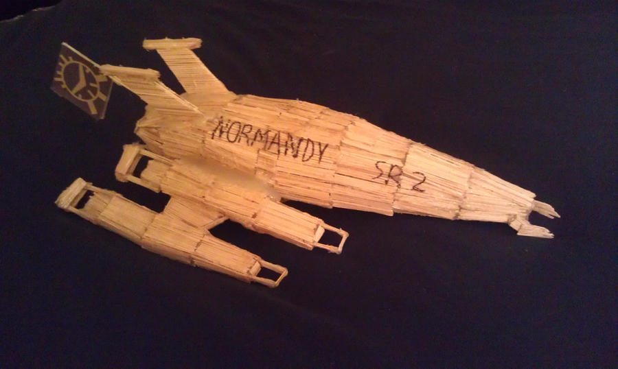 Toothpick Normandy SR2 by TheApiem